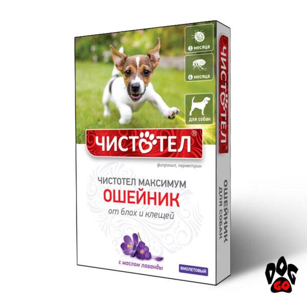 Ошейник от блох для собак Чистотел МАКСИМУМ, 65 см (фиолетовый)