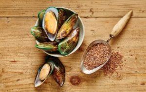 nutram - мидии и семена льна - для здоровых суставов