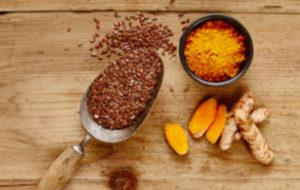 nutram - семена льна и куркума - для иммуностимуляции