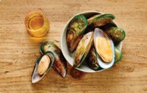 nutram - жир лосося и мидии - для здоровья суставов