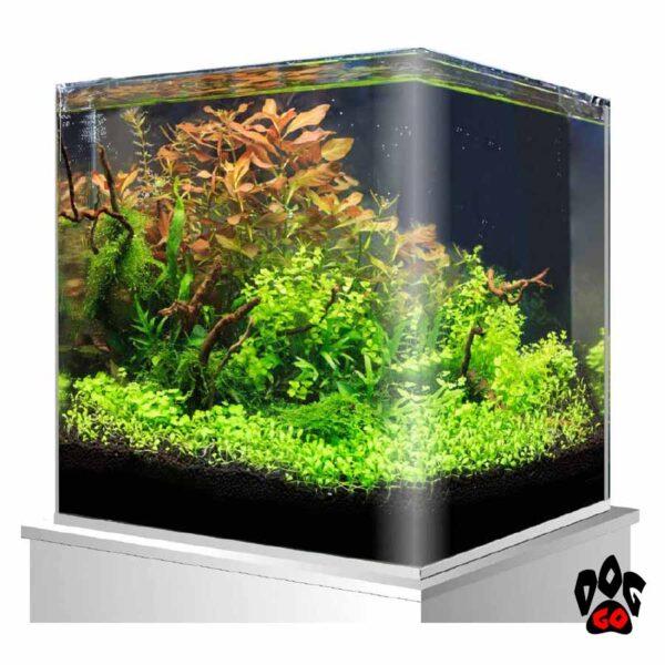 Морской аквариум на 60 литров AMTRA NANOTANK панорамный (38x38x43 см), с крышкой, стекло 5 мм, черный фон