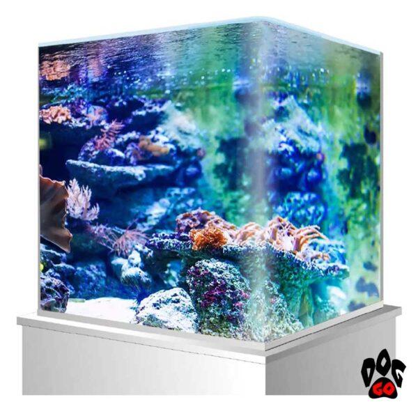 Морской аквариум на 60 литров AMTRA NANOTANK панорамный (38x38x43 см), с крышкой, стекло 5 мм-2