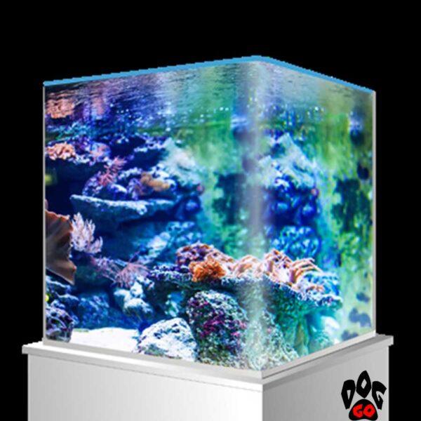 Морской нано-аквариум на 90 литров AMTRA NANOTANK, панорамный (45x45x45 см), с крышкой, стекло 6 мм, синий фон