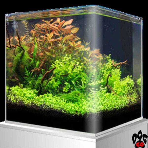 Морской нано-аквариум на 90 литров AMTRA NANOTANK, панорамный (45x45x45 см), с крышкой, стекло 6 мм, черный фон