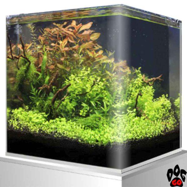 Панорамный аквариум AMTRA NANOTANK 20 на 18 литров (25x25x30 см), стекло 5 мм