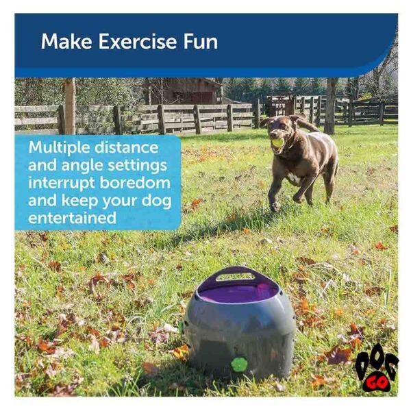 Автоматический метатель мяча для собак PetSafe - 5