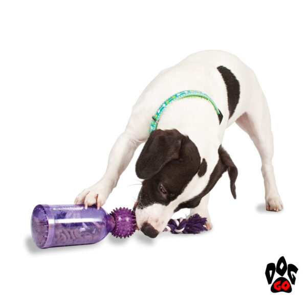 Игрушка-кормушка для собак PETSAFE Бутылка CROCI, литая резина, 16см-3