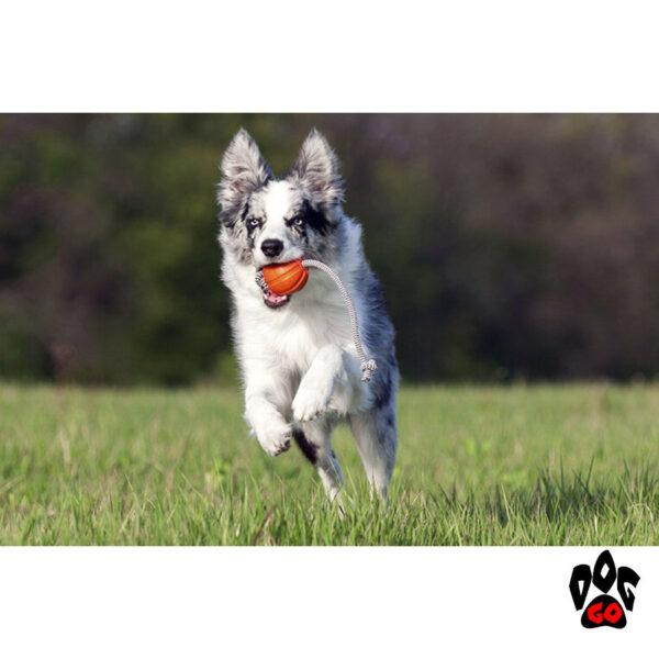Лайкер игрушка для собак, на веревке COLLAR Корд на шнуре-3