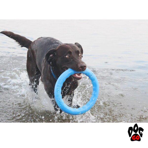 Тренировочные кольца для собак COLLAR PitchDog-3