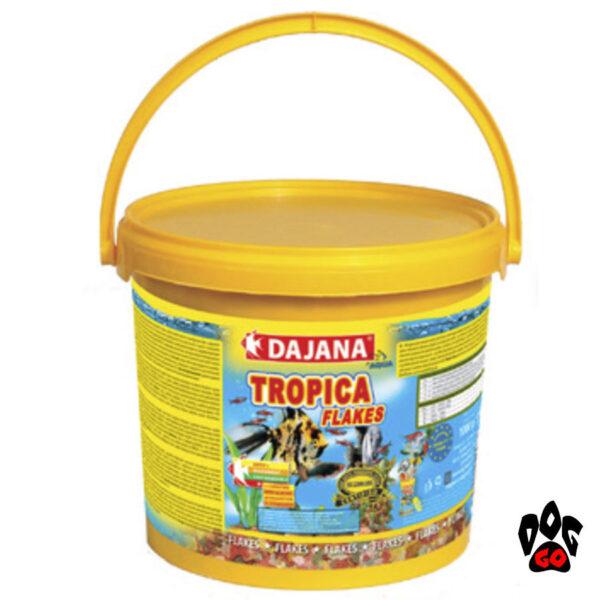 Корм для аквариумных рыбок DAJANA Tropica Basic, хлопья для всех видов-3